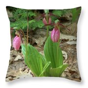Pink Ladys Slipper Group Throw Pillow