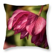 Pink Lampshade Throw Pillow
