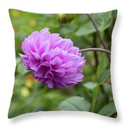 Pink Lavender Dahlia Throw Pillow