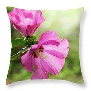 Pink Light Rose Of Sharon 2016 Throw Pillow