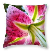 Pink Lily Summer Botanical Garden Art Prints Baslee Troutman Throw Pillow