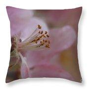 Pink Of Spring Throw Pillow