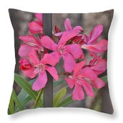 Pink Oleander II Throw Pillow