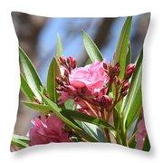 Pink Oleander IIi Throw Pillow