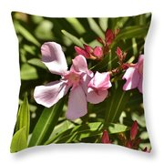 Pink Oleander Iv Throw Pillow