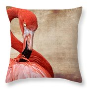 Pink On Brown Scratch Throw Pillow
