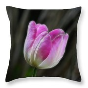 Pink On Display Throw Pillow