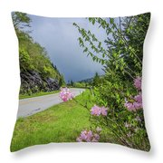 Pink On The Parkway Throw Pillow