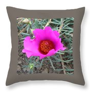 Pink Or Wot Throw Pillow