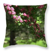 Pink Orchard Blossoms Throw Pillow by Patricia Strand