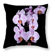 Pink Orchid Iv Throw Pillow