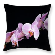 Pink Orchid Viii Throw Pillow