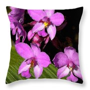 Pink Painted Orchids Throw Pillow