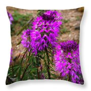 Pink Party 2 Throw Pillow