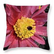 Pink Pasque Flower Throw Pillow