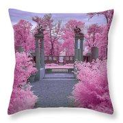 Pink Path To Paradise Throw Pillow