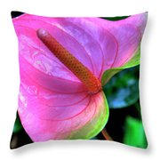 Pink Peace Lily Throw Pillow