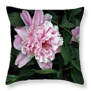 Pink Peone Throw Pillow