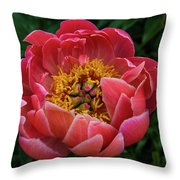 Pink Peony 2016 Throw Pillow