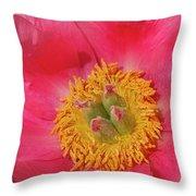 Pink Peony Flower Fine Art  Throw Pillow
