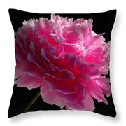 Pink Peony On A Black Background Throw Pillow