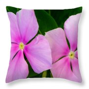 Pink Periwinkle Flower Throw Pillow