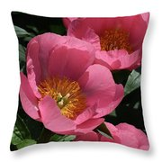 Pink Perspective 0463 Throw Pillow