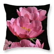 Pink Perspective 0552 Throw Pillow