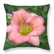 Pink Petals - Chorus Line Daylily Throw Pillow