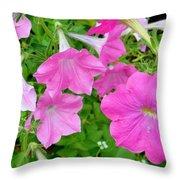 Pink Petunia Flower 11 Throw Pillow