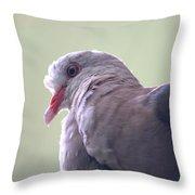Pink Pigeon Nesoenas Mayeri Throw Pillow