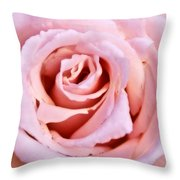 Pink Pink Rose Throw Pillow