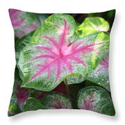 Pink Plants Throw Pillow