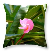 Pink Plumeria In Bloom Throw Pillow