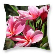 Pink Plumeria Throw Pillow