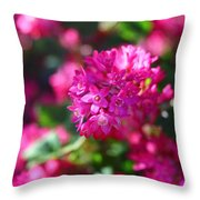 Pink Profusion 2 Throw Pillow