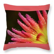 Pink Rain Throw Pillow