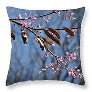 Pink Redbud Tree Blossoms- Fine Art Throw Pillow