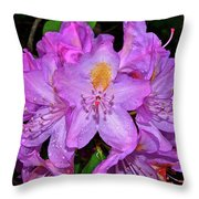 Pink Rhododendron 003 Throw Pillow