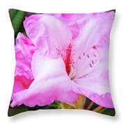 Pink Rhododendron Art Print Floral Canvas Rhodies Baslee Troutman Throw Pillow