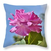 Pink Rose Against Blue Sky I Throw Pillow