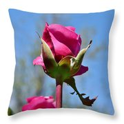 Pink Rose Against Blue Sky Iv Throw Pillow
