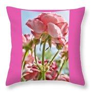 Pink Rose Back Light Throw Pillow