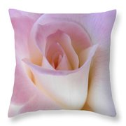 Pink Rose Beginnings Throw Pillow