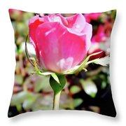 Pink - Rose Bud - Beauty Throw Pillow