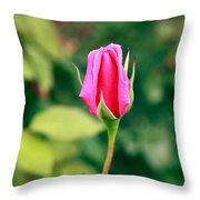 Pink Rose Bud Throw Pillow
