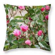 Pink Rose Buds Throw Pillow