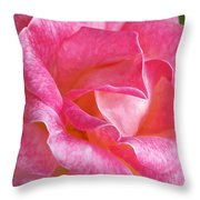 Pink Rose Close Up Throw Pillow