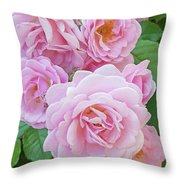 Pink Rose Cluster II Throw Pillow