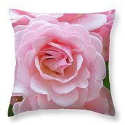 Pink Rose Cluster IIi Throw Pillow